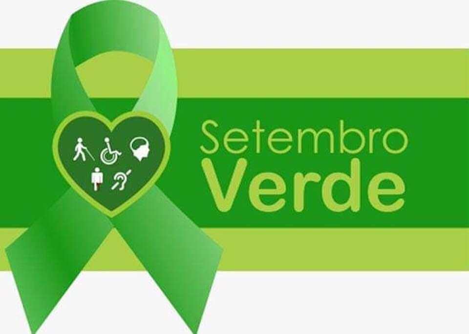 Setembro Verde, mês dedicado a dar visibilidade à inclusão social da pessoa  com deficiência | CAU/RJ